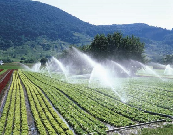 largest-irrigation-system-in-pakistan